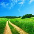 Szabad akarat vagy eleve elrendeltség? Hol a határ?