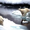 Klímaérzékeny helyen élünk