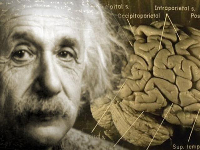 Einstein agyának sagája I.