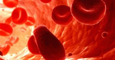 __vér.jpg