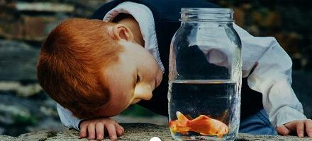 goldfishtale-.jpg