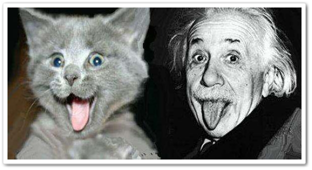 humor-albert-einstein-funny-pictures-110.jpg