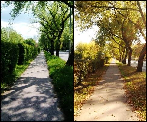időérzékelés-tavasz-ősz.jpg