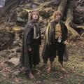 A hobbitokról