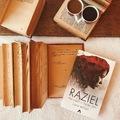 """""""Gyorstalpaló emberképző"""" huszonnyolc fejezetben – Lana Millan: Raziel – Egy angyal az élet küszöbén"""
