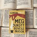 Egy könyv azokról, akik próbáltak boldogok lenni - Sándor Anikó: Megbukott bűvészinasok