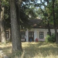 A Puskin Múzeum