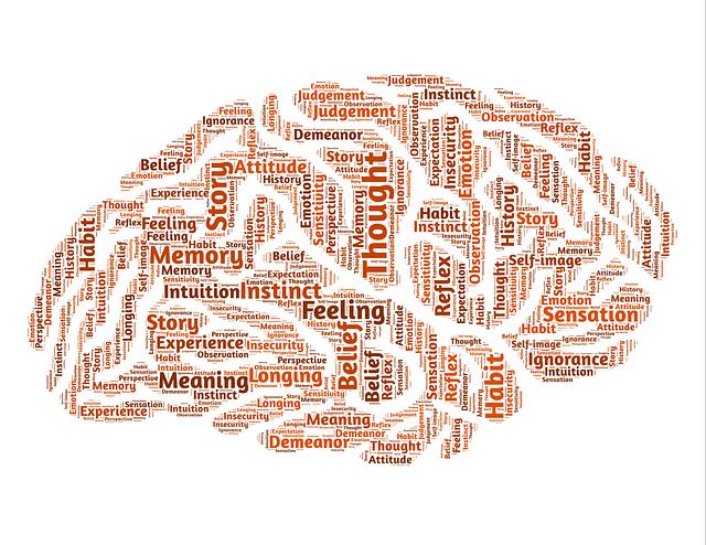 brain-544403_640