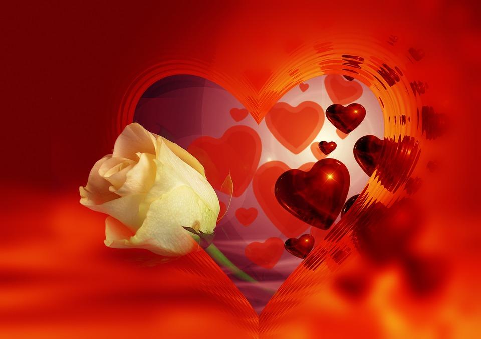 heart-68199_960_720.jpg