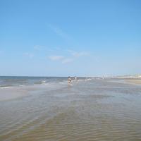 Újra a tengerparton