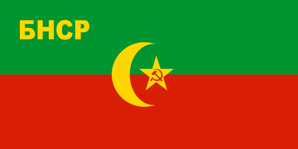 flag_of_the_bukharan_people_s_soviet_republic_svg.png