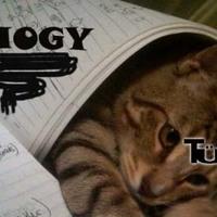 Hogy segít a macskám a tanulásban?