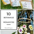 A botanikus művészet 10 remekbe szabott példája