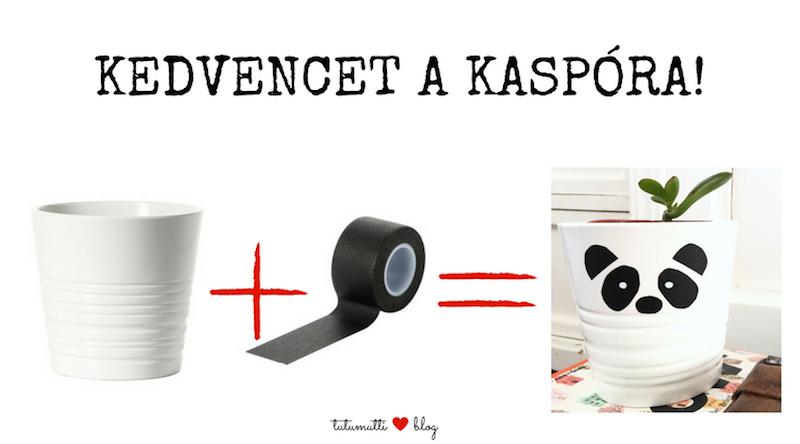 tutumutti_kedvencet_a_kaspora_1.png