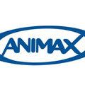 Közép-európai Animax