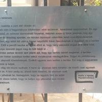 A kerítés bájos meséje