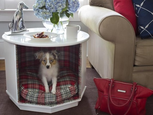 dog-house-1.jpg