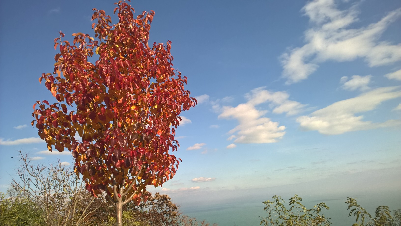 Vasárnapi őszi búcsú a színektől