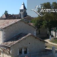 Tyúktartás Dél-Franciaországban: Szarvasgombás omlett