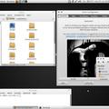 Orta téma telepítése Ubuntu 10.10 alatt .: