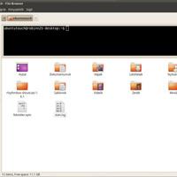 Nautilus terminal telepítése Ubuntu 10.04 alatt .: