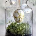 Húsvéti Öko Dekor - könnyű és gyors praktikák az utolsó pillanatra