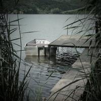 Variációk medvehagymára - orfűi kalandok és a pana cotta