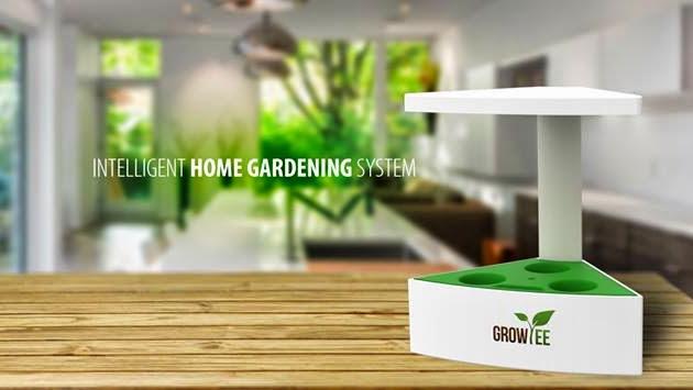 GROWIEE, az asztali kertészet jövője - Intelligens, magyar és miniatűr