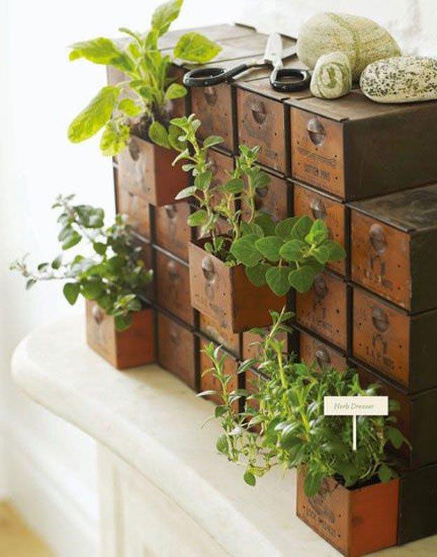 indoor-herb-garden-ideas-drawer-herb-garden.jpg