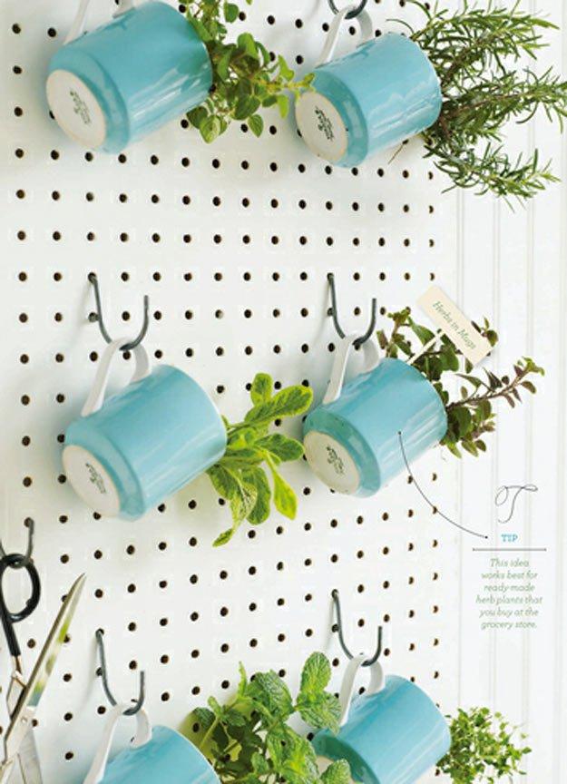 indoor-herb-garden-ideas-pegboard-herb-garden.jpg
