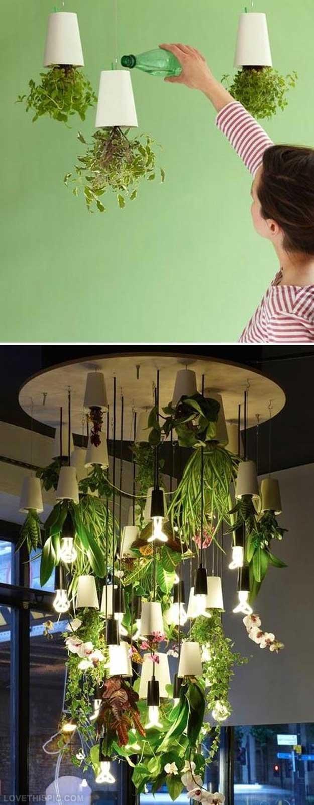 indoor-herb-garden-ideas-upside-indoor-plants-2.jpg