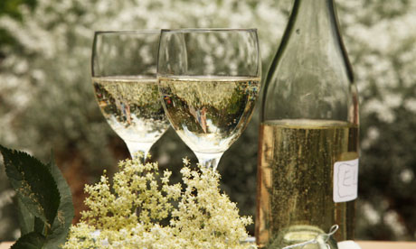 Elderflower-champagne-006.jpg
