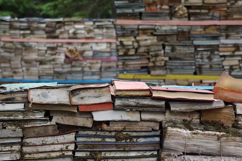decaying-books5.jpg