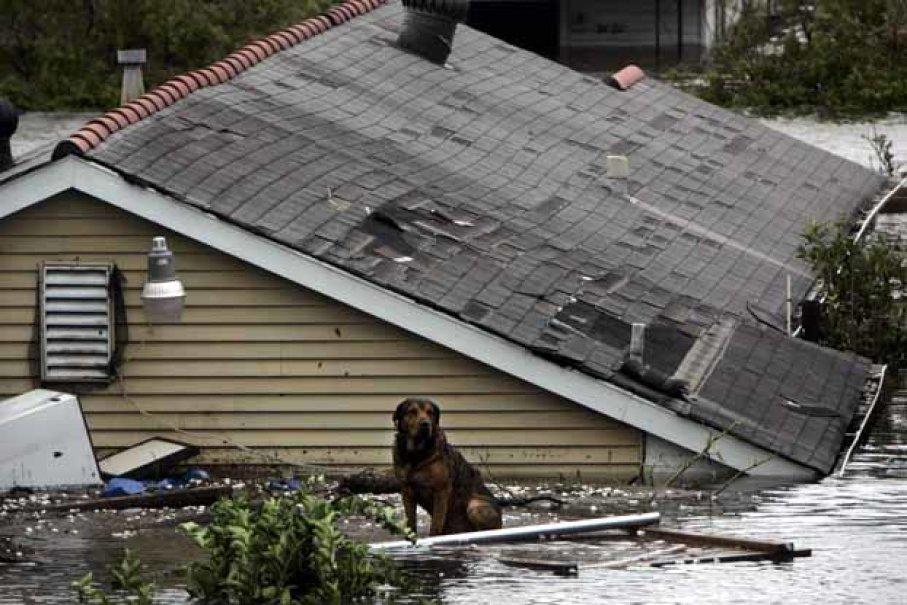 worst-hurricanes-8.jpg
