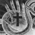 Csuhás kígyókról és csúcsragadozókról a kereszt alatt