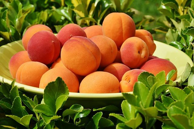 apricots-1522680_640.jpg