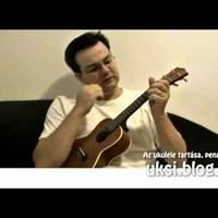 Friss ukuleletulajdonosoknak I. - a hangszer tartása, pengetése
