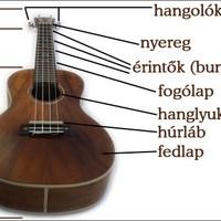 Ismerkedés az ukulelével I.