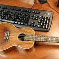 Az első magyar ukulele blog