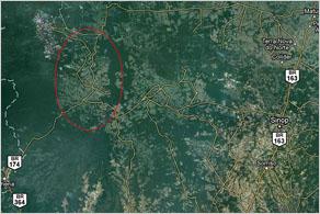 A TreeViver mintegy 20 ezer négyzetkilométer nagyságú területen telepíti vissza az esőerdőt.