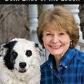 Hogyan segítsünk a pánikba esett kutyának?