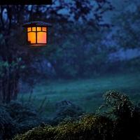 Hallottál már kutyagumival üzemeltetett utcai lámpákról?