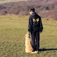 A kizárólag jutalmazással képzett kutya engedelmesebb és egészségesebb?