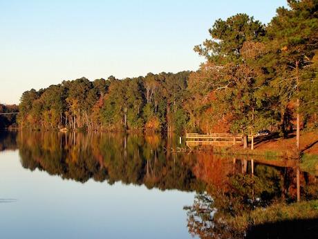 lake-65443_1280.jpg