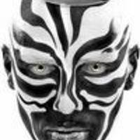 Városi Zebra
