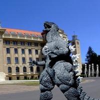 Vége a mókának Debrecenben