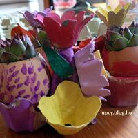 Csilla és Noémi névnapra - mini növényhez kaspó