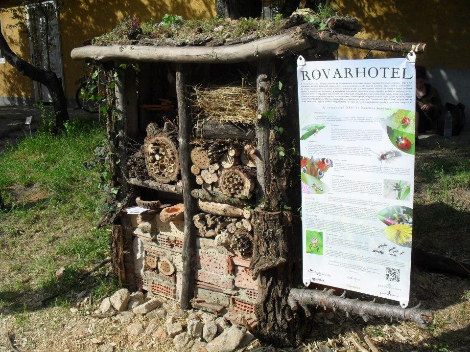 0106vizkereszt_rovarhotel_1.jpg