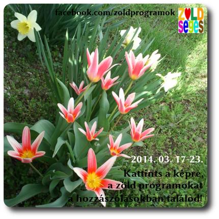20140317_23.JPG