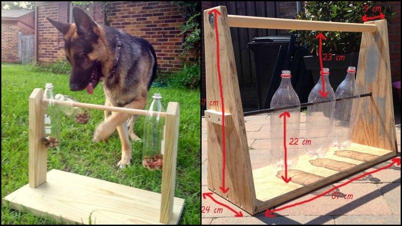 spinning-plastic-bottle-dog-treat-game_1.jpg